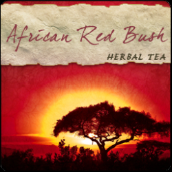 Rooibos (Red Bush) African