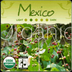 Organic Mexico Coffee Altura Tollan