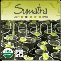 Organic Sumatra Gayo Mountain