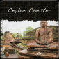 Ceylon Chester Broken Orange Pekoe