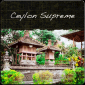 Ceylon Supreme Flowery Orange Pekoe