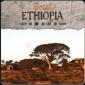 Decaf Ethiopia Longberry