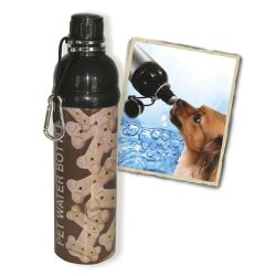 Pet Water Bottle Stainless Steel 24 oz Bone
